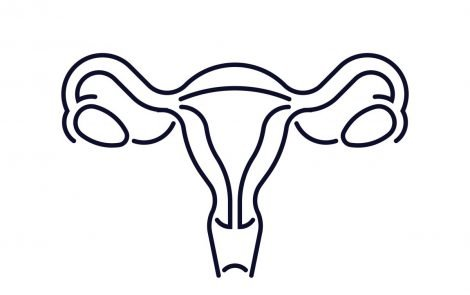 Lab Model of Entire Female Reproductive System Offers New Endometriosis Research Possibilities