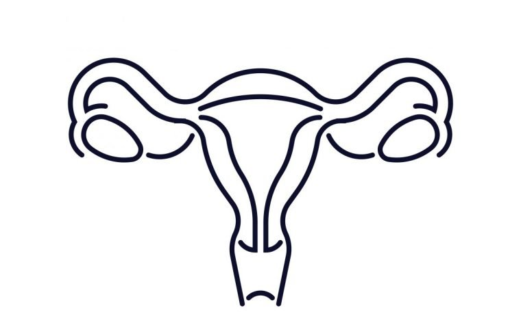 Elagolix Shows Promise in Treating Symptoms of Both Endometriosis and Uterine Fibroids, Experts Say in Interview